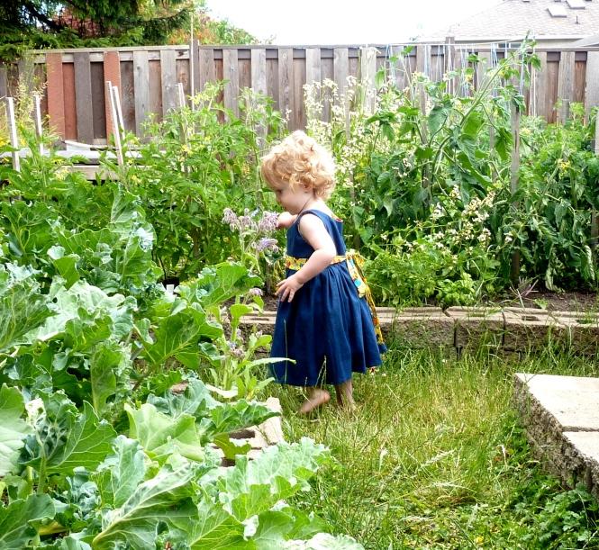 garden_anna